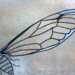 phoca_thumb_l_cikade wing